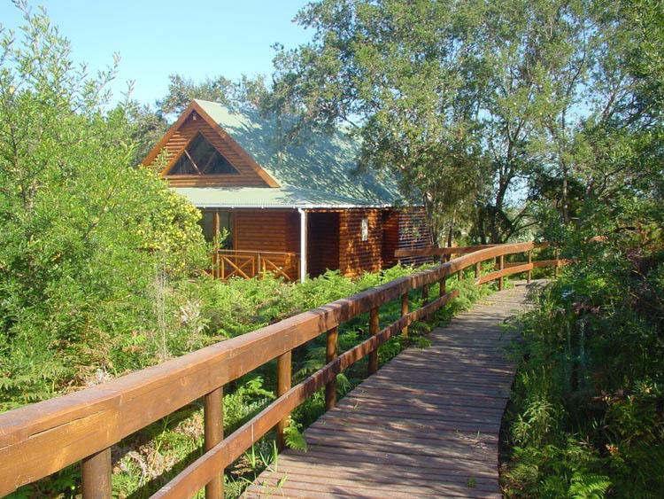 The-Fernery-Lodge-7-von-17