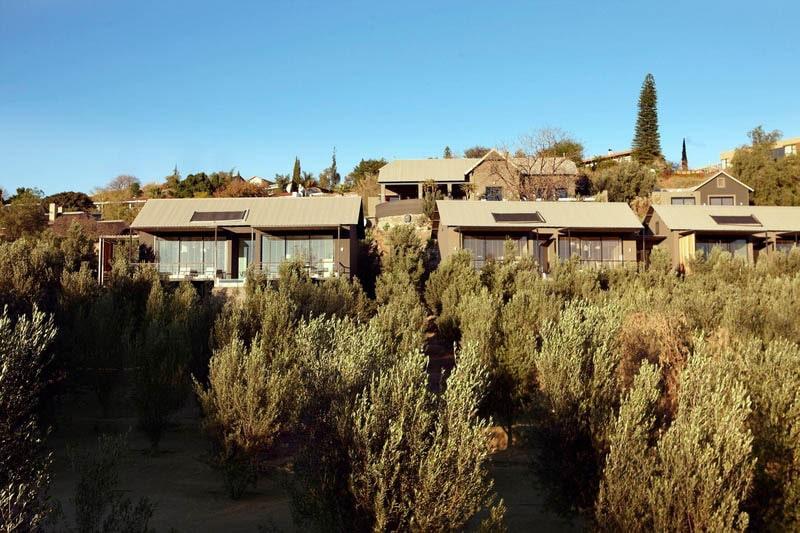 The Olive Exlusive (16 von 17)