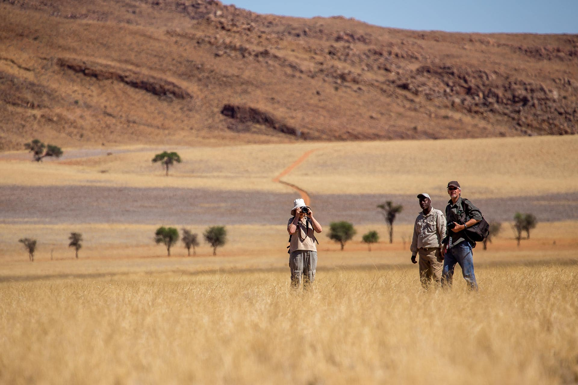 Tok-Tokkie-Trail-Wueste-Namibia-32