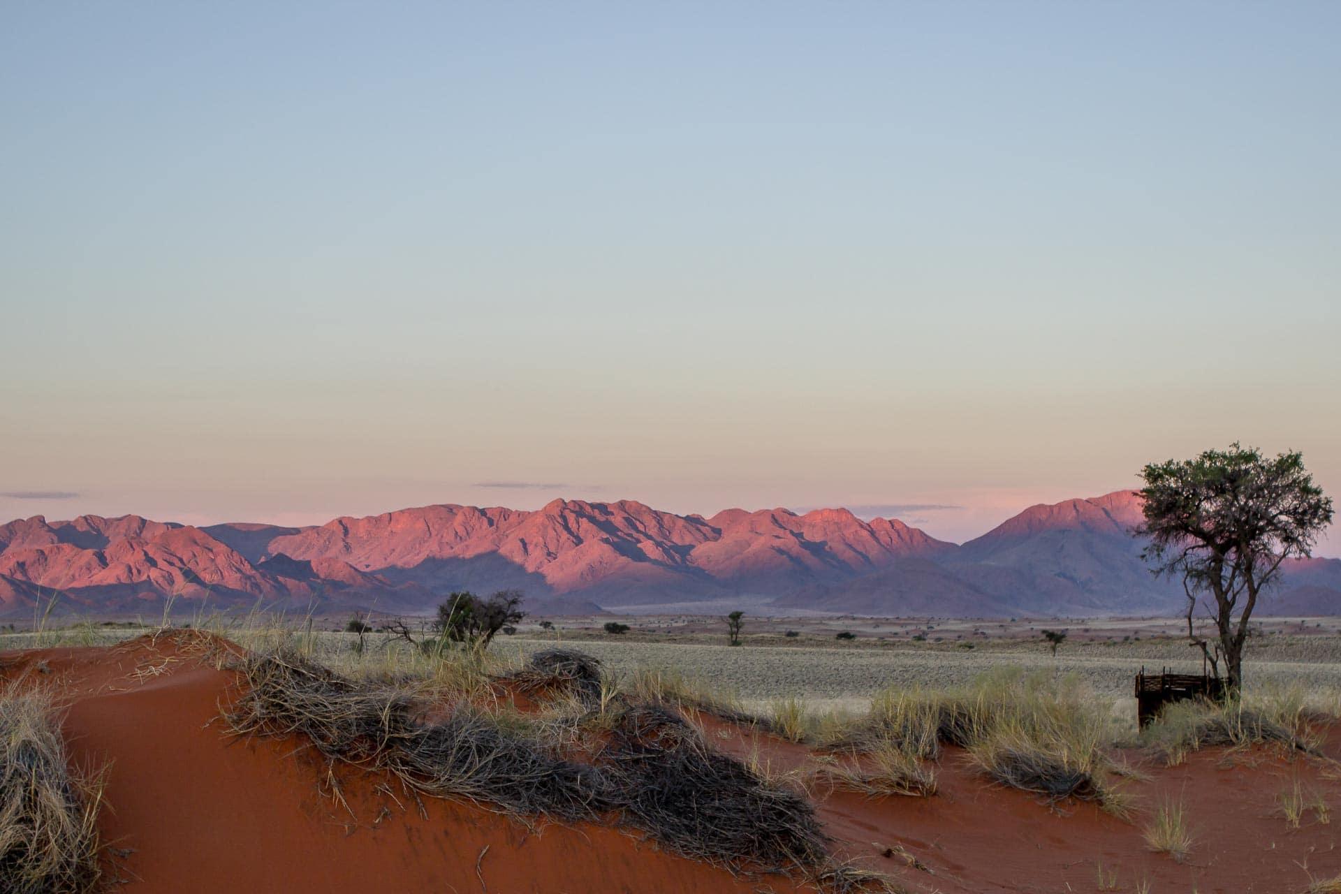 Tok-Tokkie-Trail-Wueste-Namibia-37