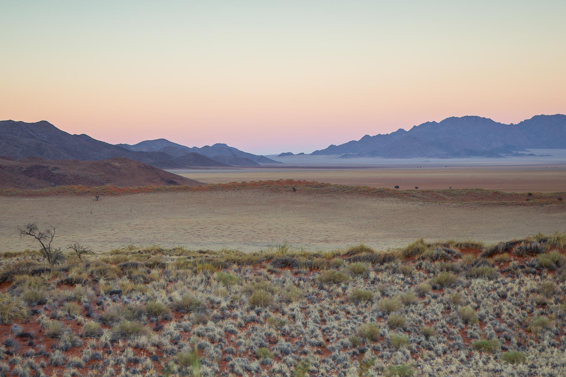 Tok-Tokkie-Trail-Wueste-Namibia-45
