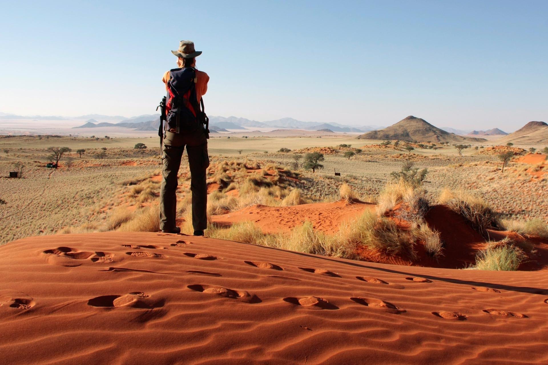 Tok-Tokkie-Trail-Wueste-Namibia-8