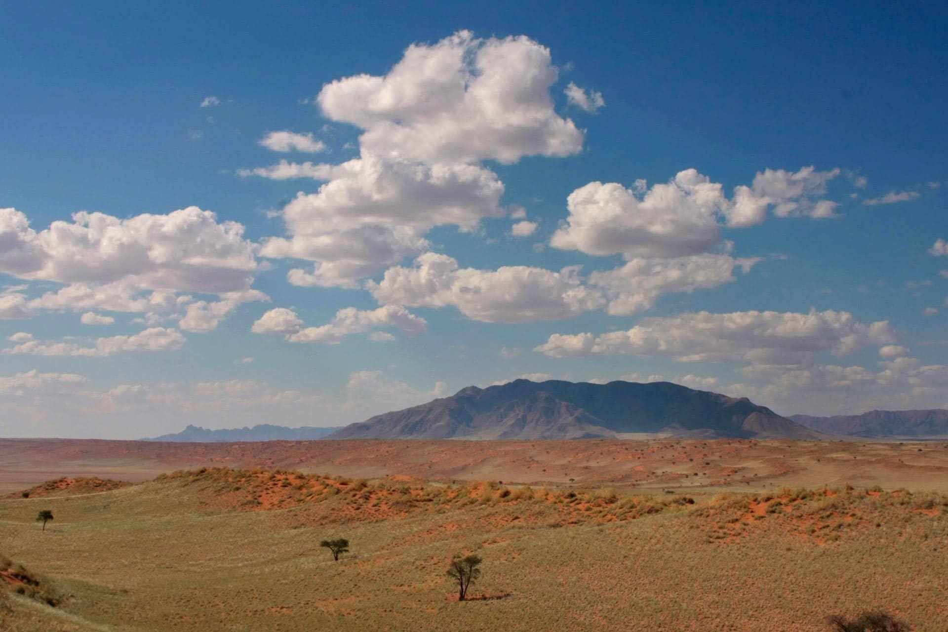 Tok-Tokkie-Trail-Wueste-Namibia-9