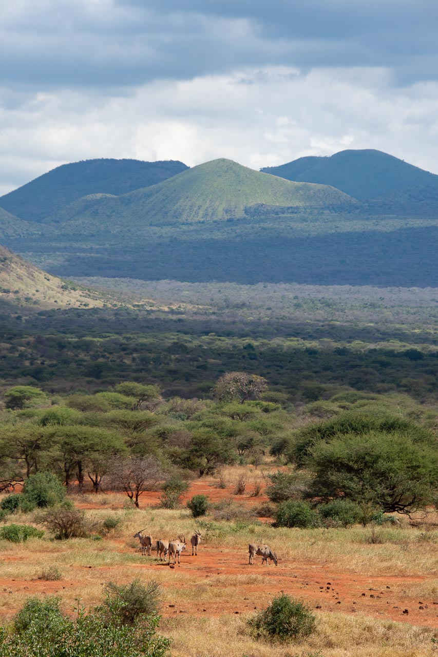 Tsavo-Nationalpark-Kenia-Globetrotter-Select-28