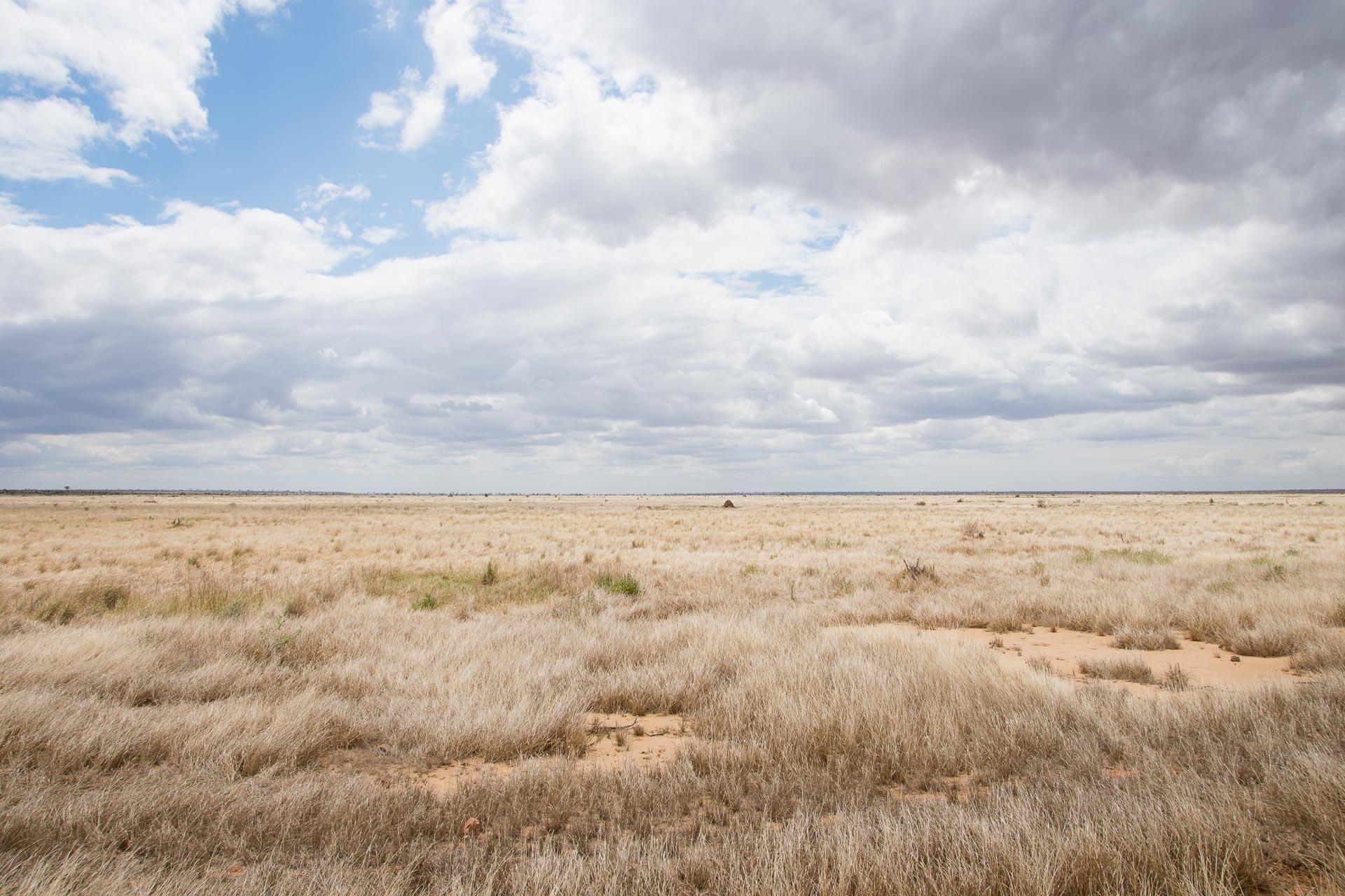 Tsavo-Nationalpark-Kenia-Globetrotter-Select-6