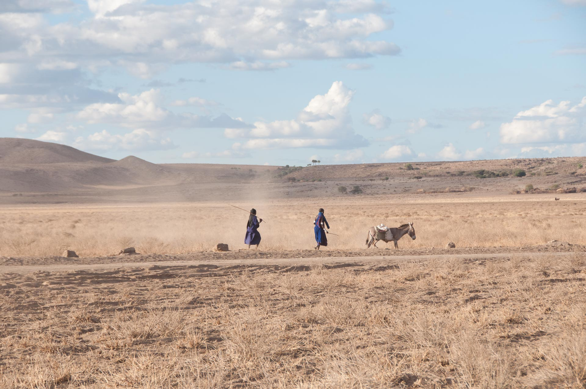 Ngorongoro Conservation in Tansania
