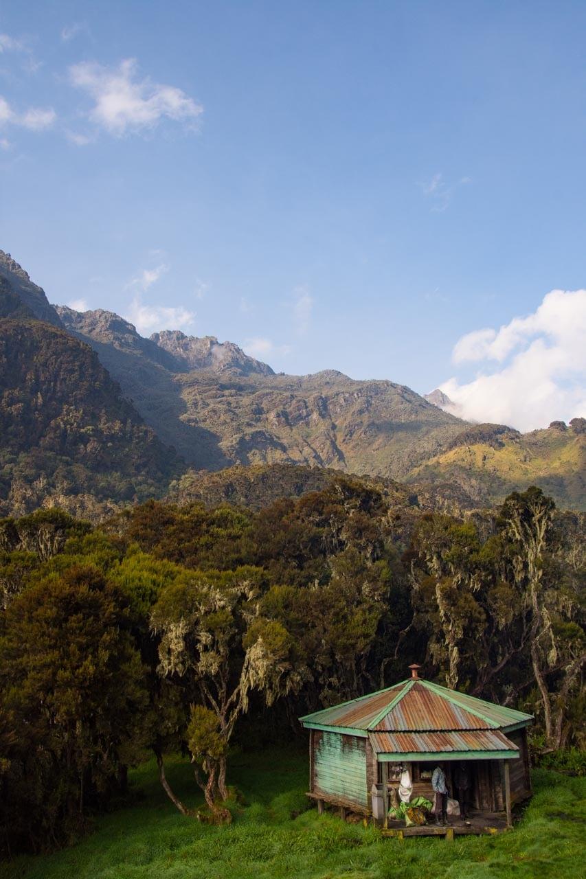 Besteigung des Ruwenzori Gebirge in Uganda